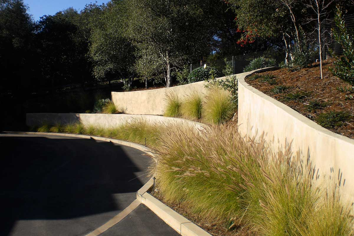 Radiused Colored Shotcrete Walls Portola Valley
